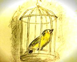 とべない小鳥